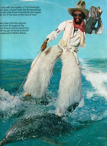 harlem dolphin-surfer