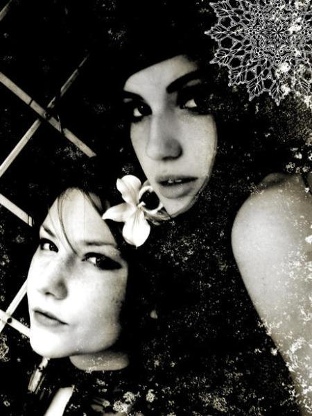 smoke fairies